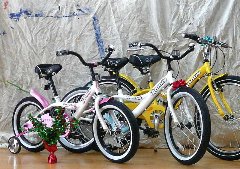 Chicago Bike Blog Top Reasons To Get Your Kid A Bike